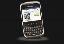 Blackberry Hoyts Argentina